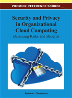 Security and Privacy in Organizational Cloud Computing: Balancing Risks and Benefits
