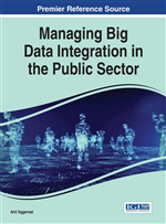 Blending Technology, Human Potential, and Organizational Reality: Managing Big Data Projects in Public Contexts