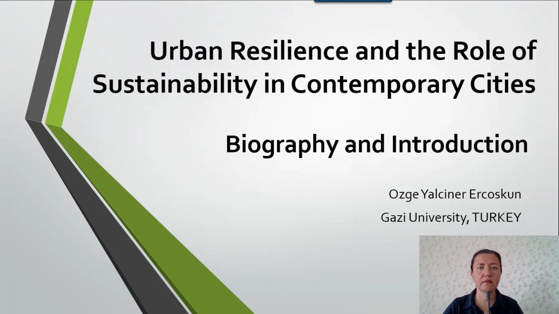 Urban Resilience and the Role of Sustainability in Contemporary Cities