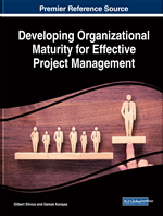 Developing Project Management Maturity as an Organizational Change Process