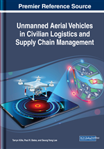 Delivery of Special Cargoes Using the Unmanned Aerial Vehicles