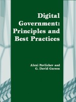 The Emergence of Digital Government: International Perspectives