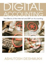 Controls, Security, and Audit in Online Digital Accounting