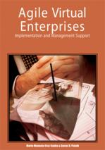 Requirements for Agile/Virtual Enterprise Intetgration