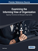 Examining the Informing View of Organization: Applying Theoretical and Managerial Approaches