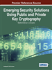 Emerging Security Solutions Using Public and Private Key Cryptography: Mathematical Concepts