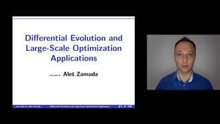 Differential Evolution and Large-Scale Optimization Applications
