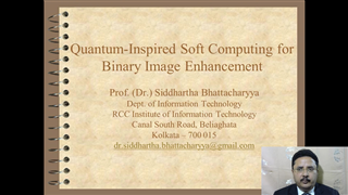 Quantum-Inspired Soft Computing for Binary Image Analysis