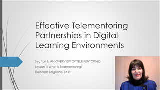 Effective Telementoring Partnerships in Digital Learning Environments