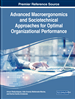 Advanced Macroergonomics and Sociotechnical Approaches for Optimal Organizational Performance