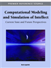 Computational Modeling and Simulation of Intellect: Current State and Future Perspectives