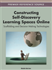 Constructing Self-Discovery Learning Spaces Online: Scaffolding and Decision Making Technologies
