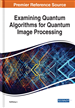Examining Quantum Algorithms for Quantum Image Processing