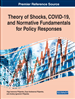 Theory of Shocks and Self-Development Laws of Economic Systems