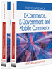 E-Business Process Management and IT Government