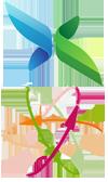 ICIR Partnership