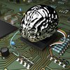 IBM's New Computer Chip Copies Brain Function